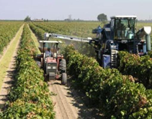 maquinaria-agricola-pic-4