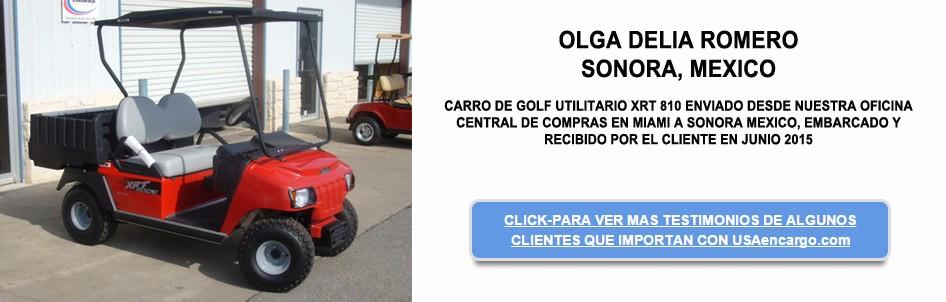 CARRO DE GOLF UTILITARIO XRT-810