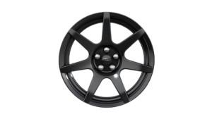 "19"" Ebony black painted carbon fiber"