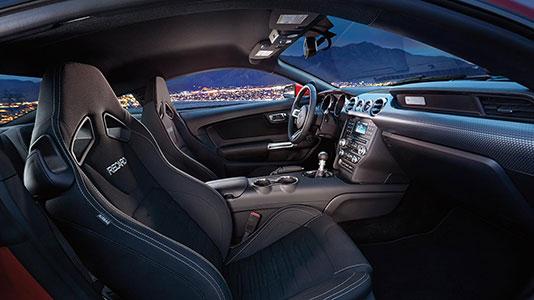 RECARO® cloth front sport seats with manual adjustment (requires Ebony interior)