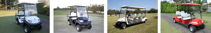 Exportacion golf Carts