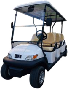 Golf Cart E326 side view